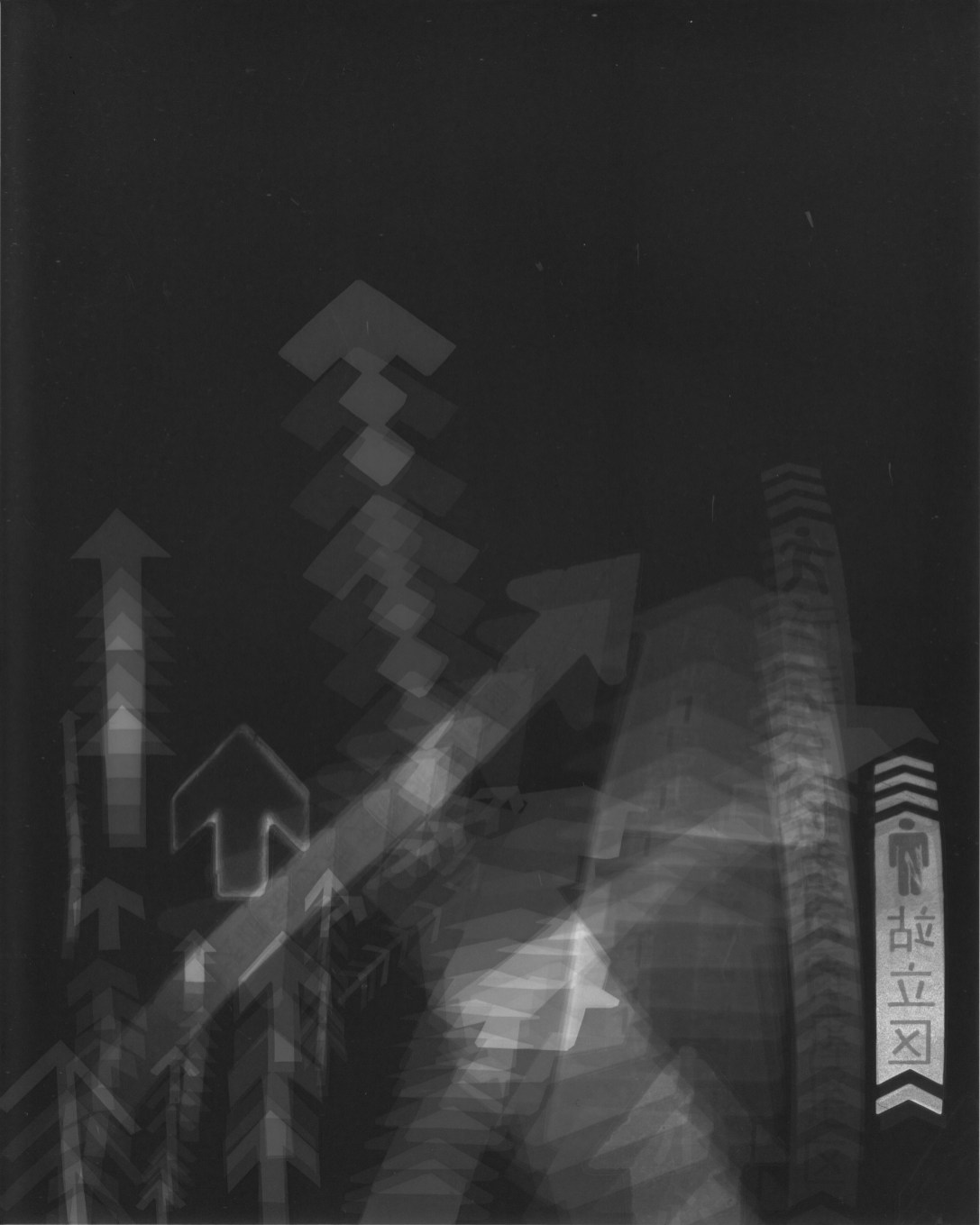 """Up"" Photogram. 20x25cm Private Collection"