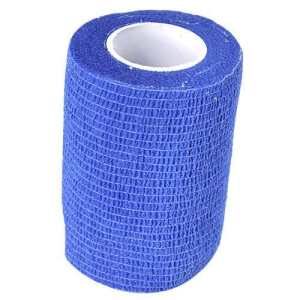 Benda adesiva blu grande