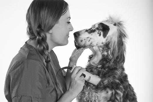 groomer-with-dog