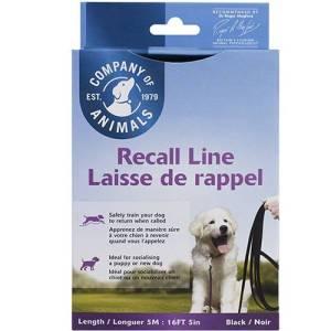 corda addestramento cani da 5mt