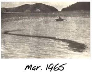 2 - O monstro do mar de Hook Island
