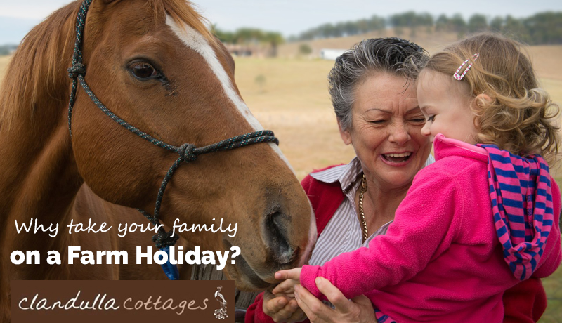 Why take your family on a farm holiday?