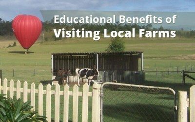 Educational Benefits of Visiting Local Farms