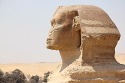 sphinx_profile