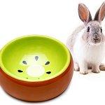 Mkouo Gamelle Ecuelle Mangeoire en Céramique Lapins pour Petits Animaux, Diamètre 13,3cm