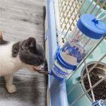 Depets Lot de 2 Bouteilles d'eau pour Petits Animaux sans BPA sans BPA
