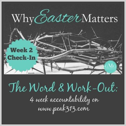 The Word and Work-Out: 4 week accountability (Week 2 Check-in) : peak313.com