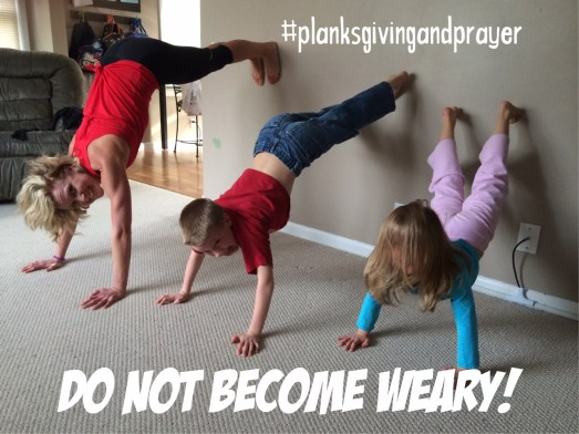 Wall planks :peak313.com