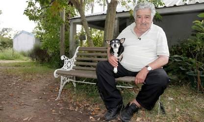 José Mujica posa con su perra Manuela en su chacra en las afueras de Montevideo. /Reuters