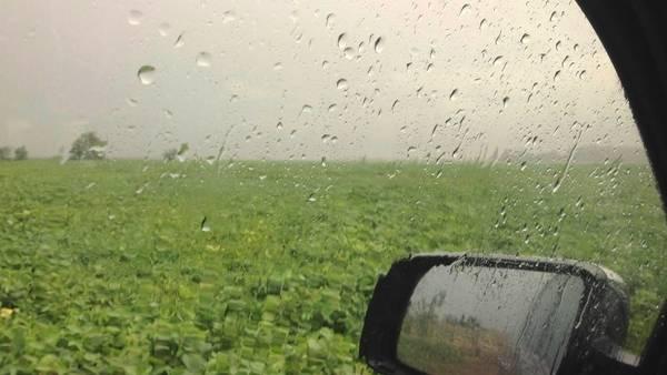 El Litoral es una de las regiones que más lluvias podría recibir, según el INTA, pero también la zona núcleo.