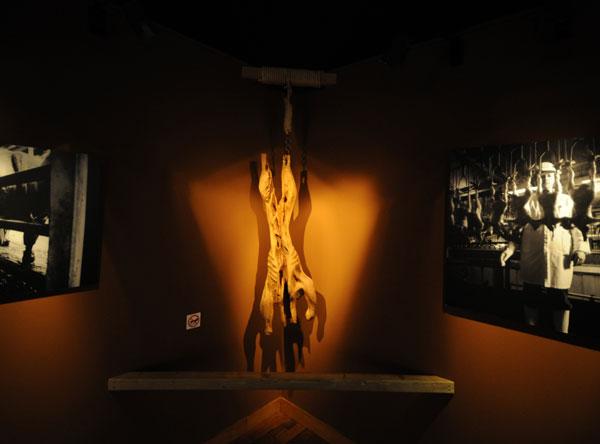 Carcasse II - Muséum Nancy