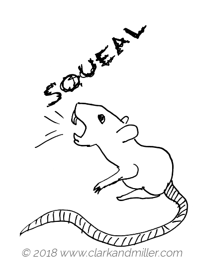 Squeal: a rat making a sound