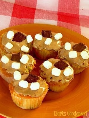 Delicious and Easy S'mores Cupcakes by Clarks Condensed