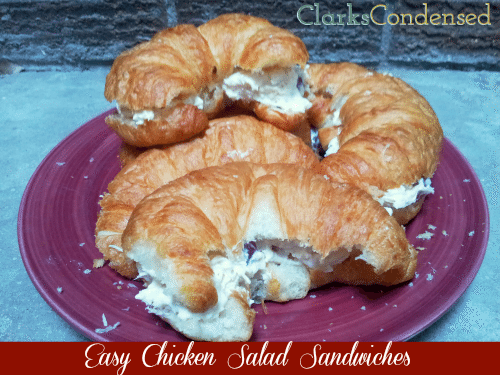 Easy Chicken Salad Sandwiches made with grapes, cashews, and parmesan cheese. #roadtrip #chicken #sandwich