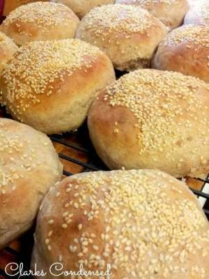 onion-hamburger-bun_zps5ee6dbd1