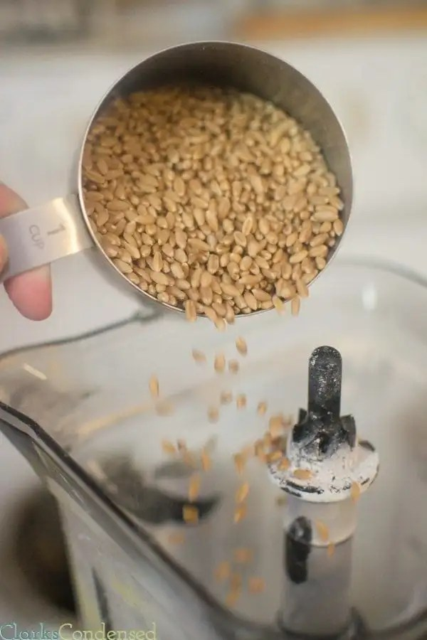 Are you wanting to grind your own flour, but don't have a grain mill? No need to worry...you can use a blender! Here's some quick tips on how to use a blender as a grain mill.
