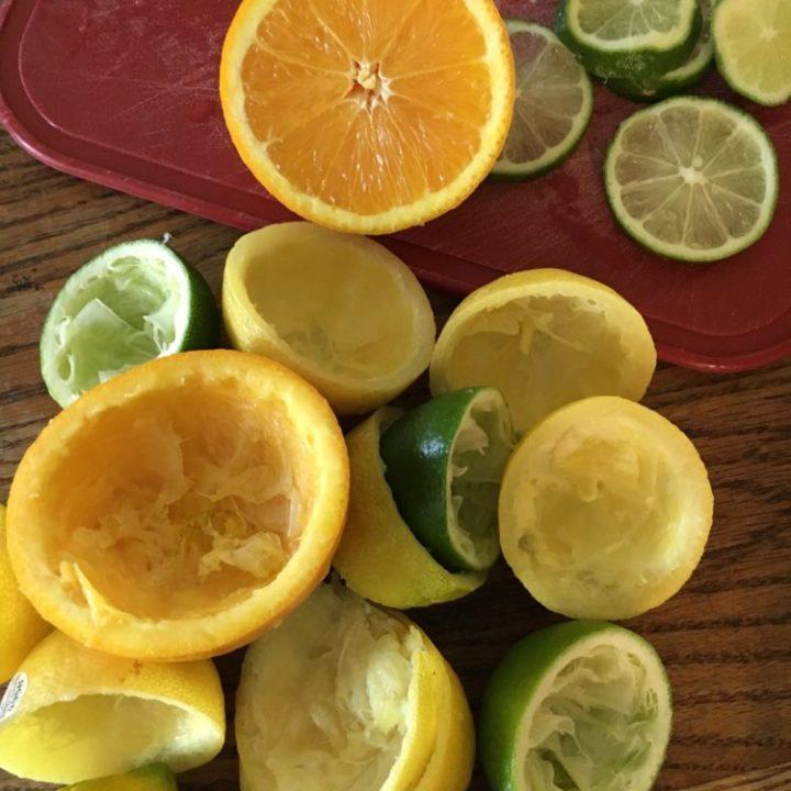 The Best Lemonade Stand Lemonade