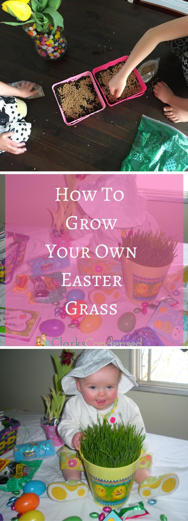 Easter Basket / Dollar Tree Easter Project / easter ideas / easter decorations / easter basket ideas / Easter & spring / easter for kids