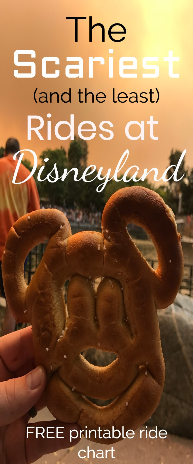 disneyland / disneyland tips / rides at disneyland / #disneyland #disneytips Disney Love / disneyland ride list / scariest rides at disneyland