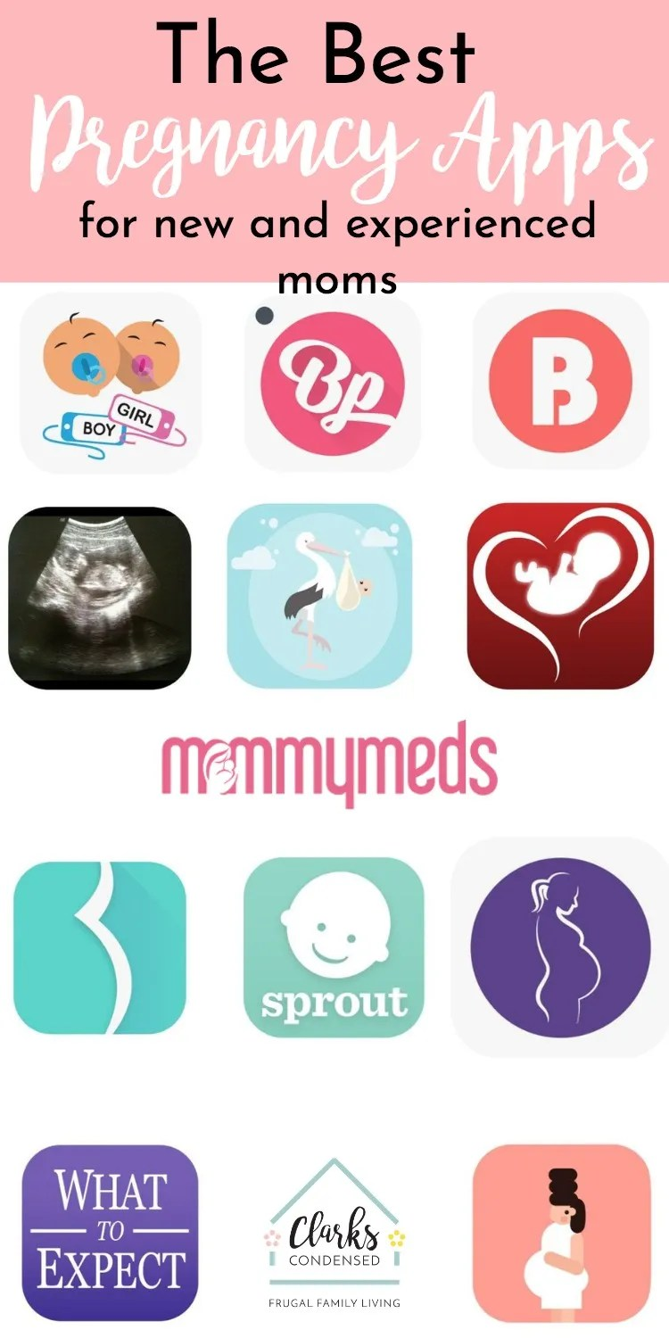 pregnancy app image of most popular apps to download