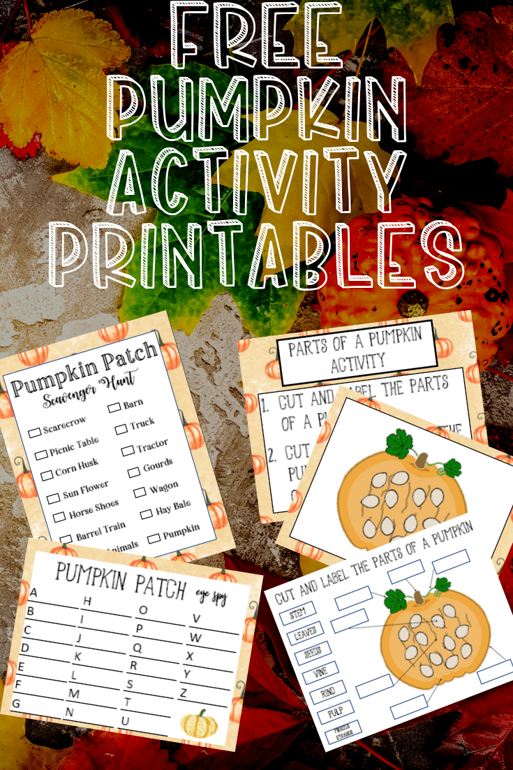 25+ Pumpkin Activities and Printables perfect for the classroom! #pumpkin #halloween #classroom #halloweenclassroom via @clarkscondensed