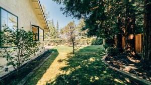 52-Sideyard Lawn