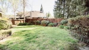 50-Bakyard Lawn
