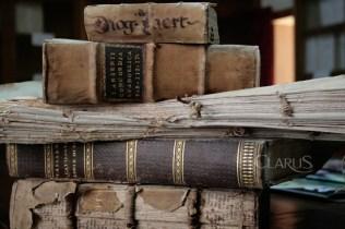 Biblioteca-diocesana-San-Tommaso-d'Aquino_Piedimonte-Mstese