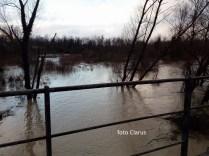 fiume volturno (1)