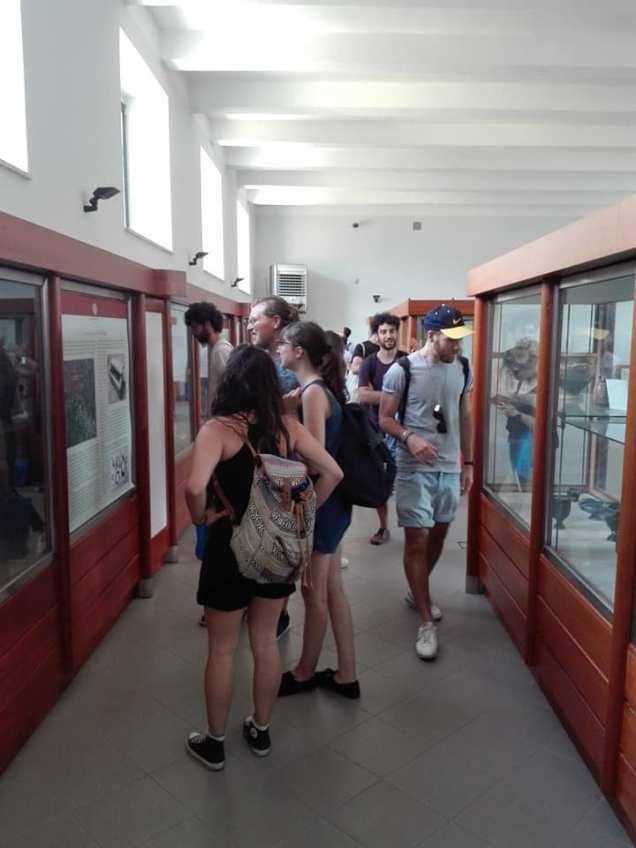Museo Archeologico Nazionale di Alife