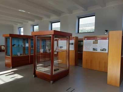 museo archeologico alife