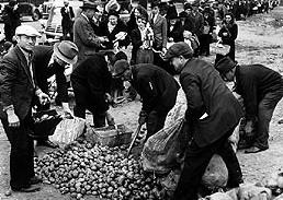 Resultado de imagen de crisis del 29 en alemania