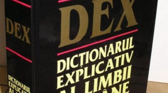 Guvernul cumpără 1.200 de dicționare și gramatici de bază ale limbii române, acestea trebuie livrate la Palatul Victoria