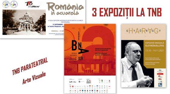 Trei expoziţii atractive şi interesante, în foaierele TNB!