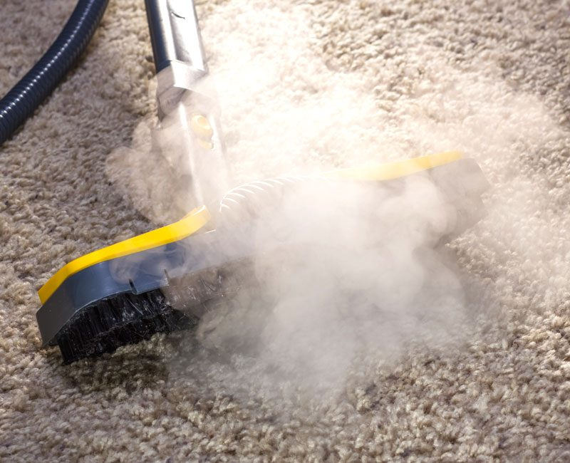 CarpetCleaning4