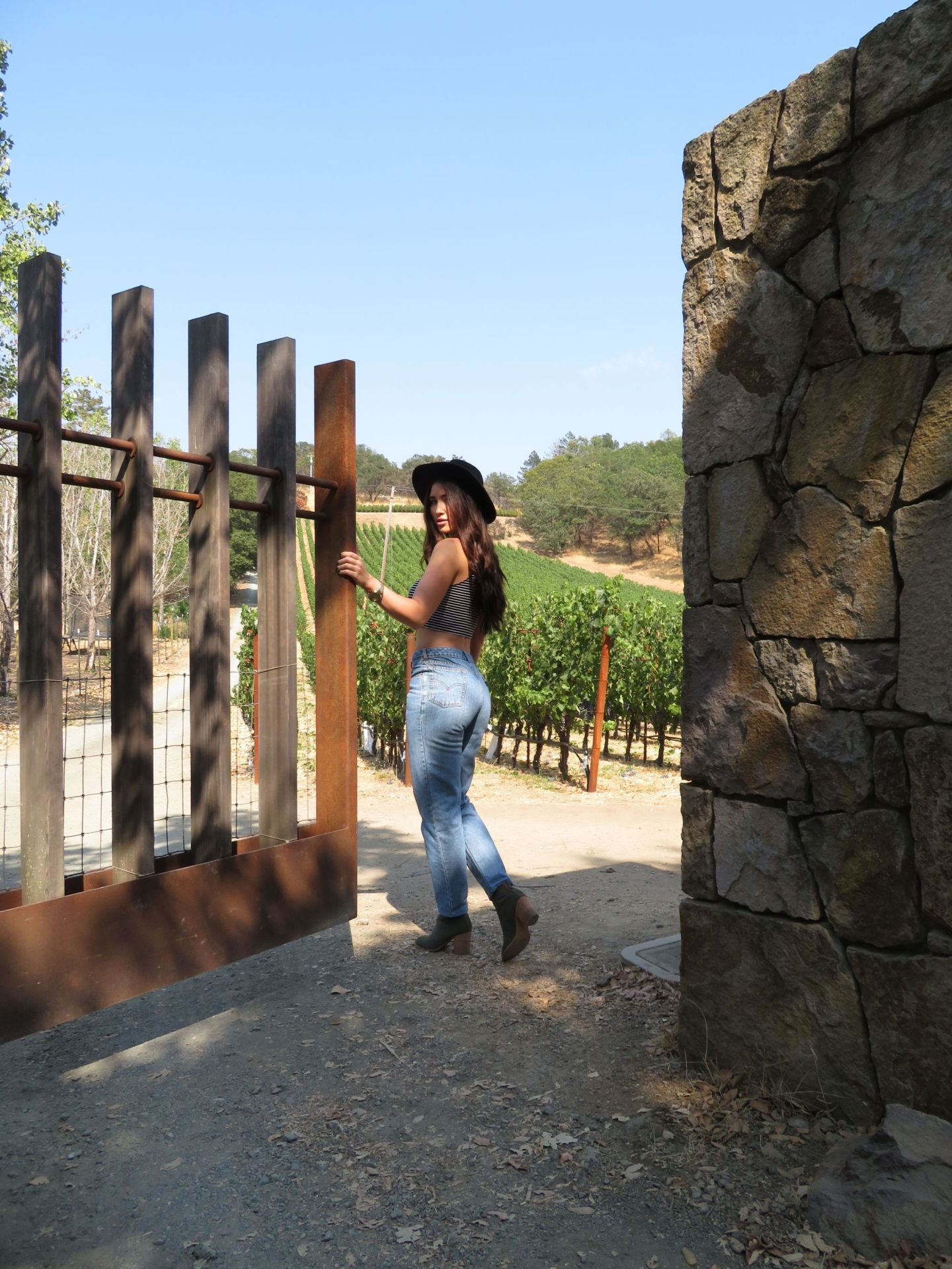72 Hours In Wine Country