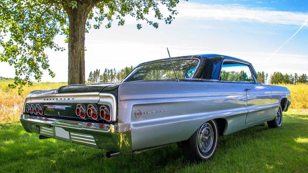 Impala 1964 (1)