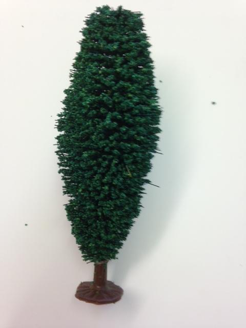 Javis poplar tree