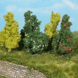 Silver Poplars 18cm (3 pc)