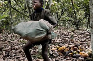 Chiefs Urged To Support Initiatives To Reduce Child Labour