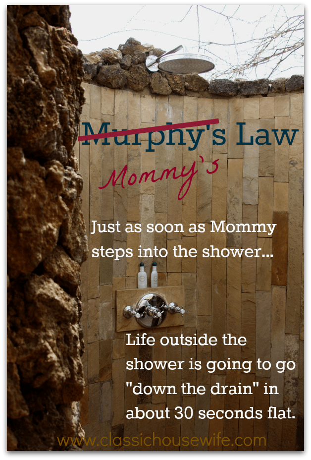 Mommy's Law - The way life goes for a mom!