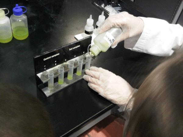 scienceexperiment2