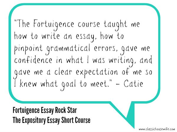 Fortuigence Essay Rock Star