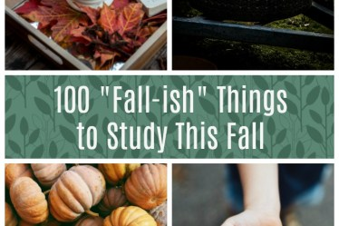 100 Fall Things to Study This Fall