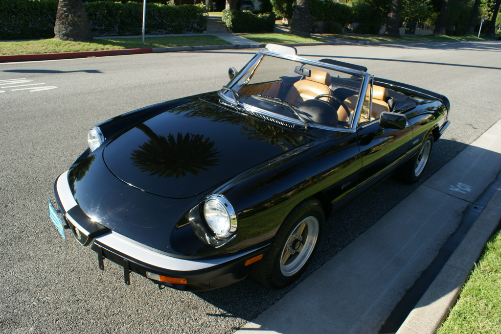 1987 alfa romeo spider graduate with 7 900 miles classic italian cars for sale. Black Bedroom Furniture Sets. Home Design Ideas
