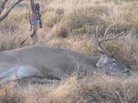 2008 Mexico Hunt with Ruger No. 1AH .25-06