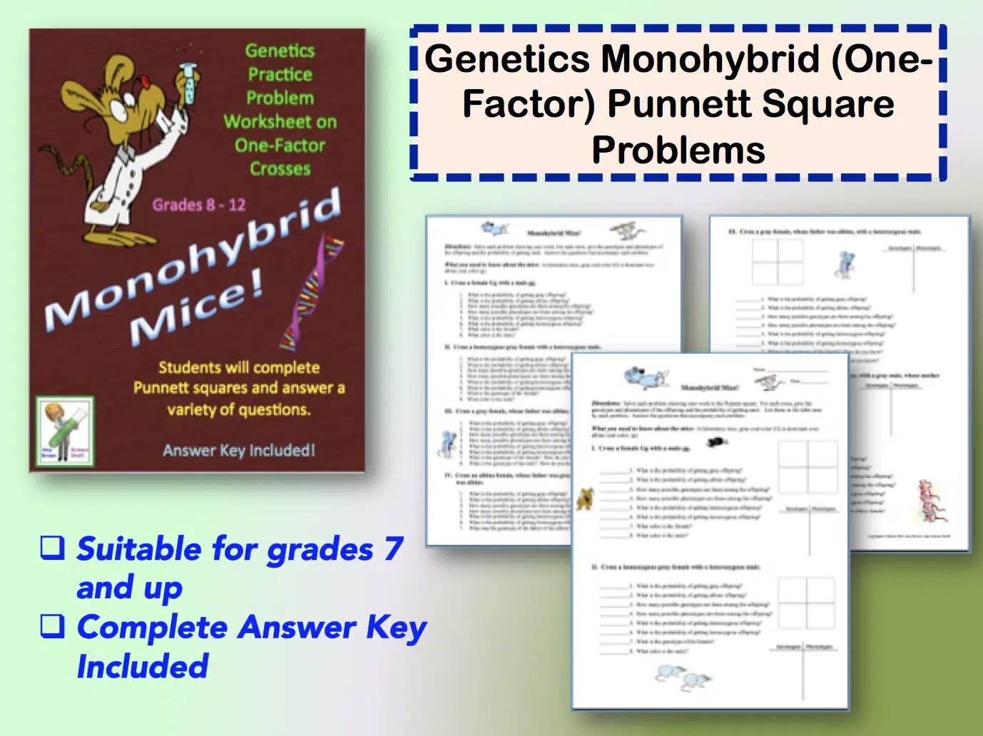 Genetics The Monohybrid One Factor Cross
