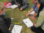 Teachers explore the diversity of life inside a hula-hoop on the garden lawn