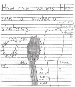 Sample Student Notebook Page from Grade 1: Collecting and Making Sense of DataCommentary - Notice the student draws the shadow between the sun and the tree. This means they either do not observe the actual phenomenon or cannot transfer what they see to paper. Most K-1 students draw what they think is there rather than what is there. Teachers can focus young learners on what is there.