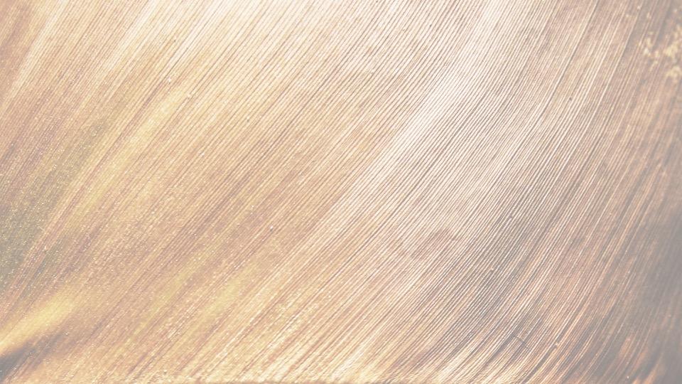 ECO-DESIGN Aujourd'hui, de nouveaux challenges motivent la création. Développement durable, recyclage, optimisation du transport, s'ajoutent à une attente créative pour satisfaire l'utilisateur. L'eco-conception, le design responsable, le recyclage, l'utilisation de matériaux eco-responsables (bambou, chanvre, liège, sagne de Provence) font partie de nos préoccupations.